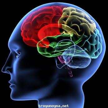 Zeka Ölçme oyunu zekanızı geliştirebilirsiniz. Çocuklarda zeka türleri farklı...